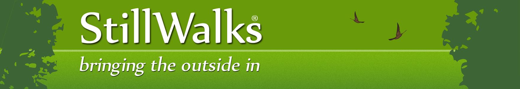 StillWalks